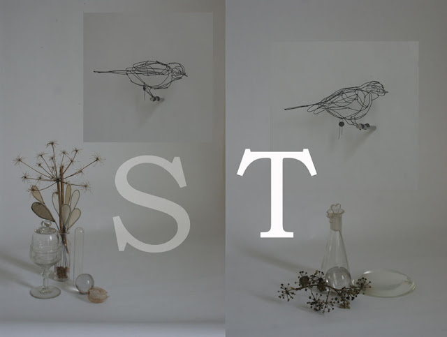 Bird S: 20 x 10 x 8 cm, Bird T: 22 x 7,5 x 10 cm