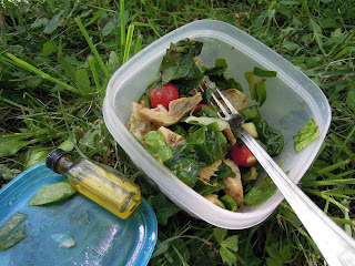 picnic salad idea