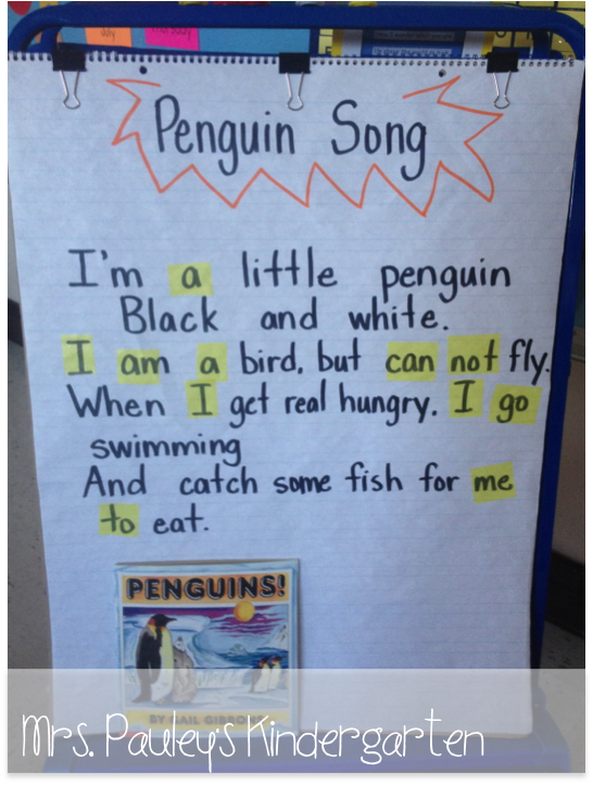 preschool penguin songs penguins and math surveys mrs pauley s kindergarten 195