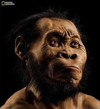 'Homo naledi': nova espécie de hominídeo é descoberta na África do Sul