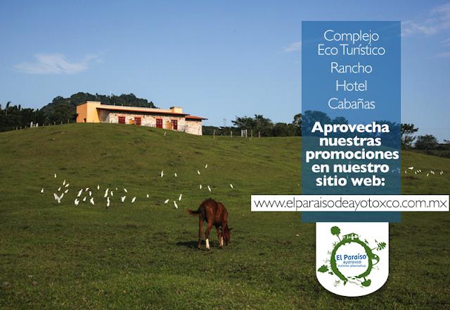 http://www.elparaisodeayotoxco.com.mx/