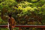 【足立美術館「榊原紫峰とその仲間たち」「再興第97回 院展」(鳥取県安来市)】