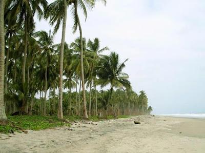 Playa de Cojimíes Manabí turismo aventura