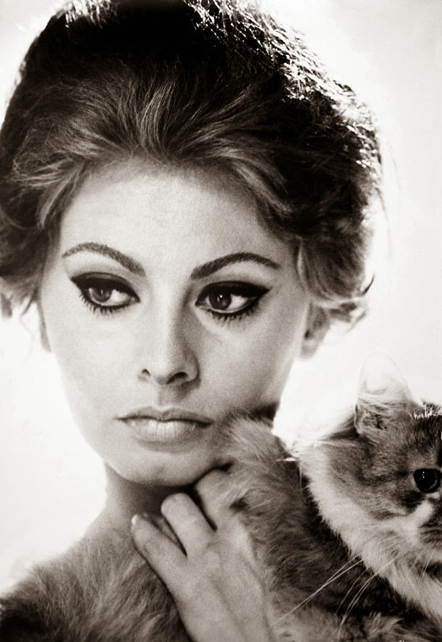 Sophia Loren, Sophia Loren young, Sophia Loren holding cat, Sophia Loren face, Sophia Loren black and white, B&W, old photograph, Sophia Loren hot, A Coin For the Well