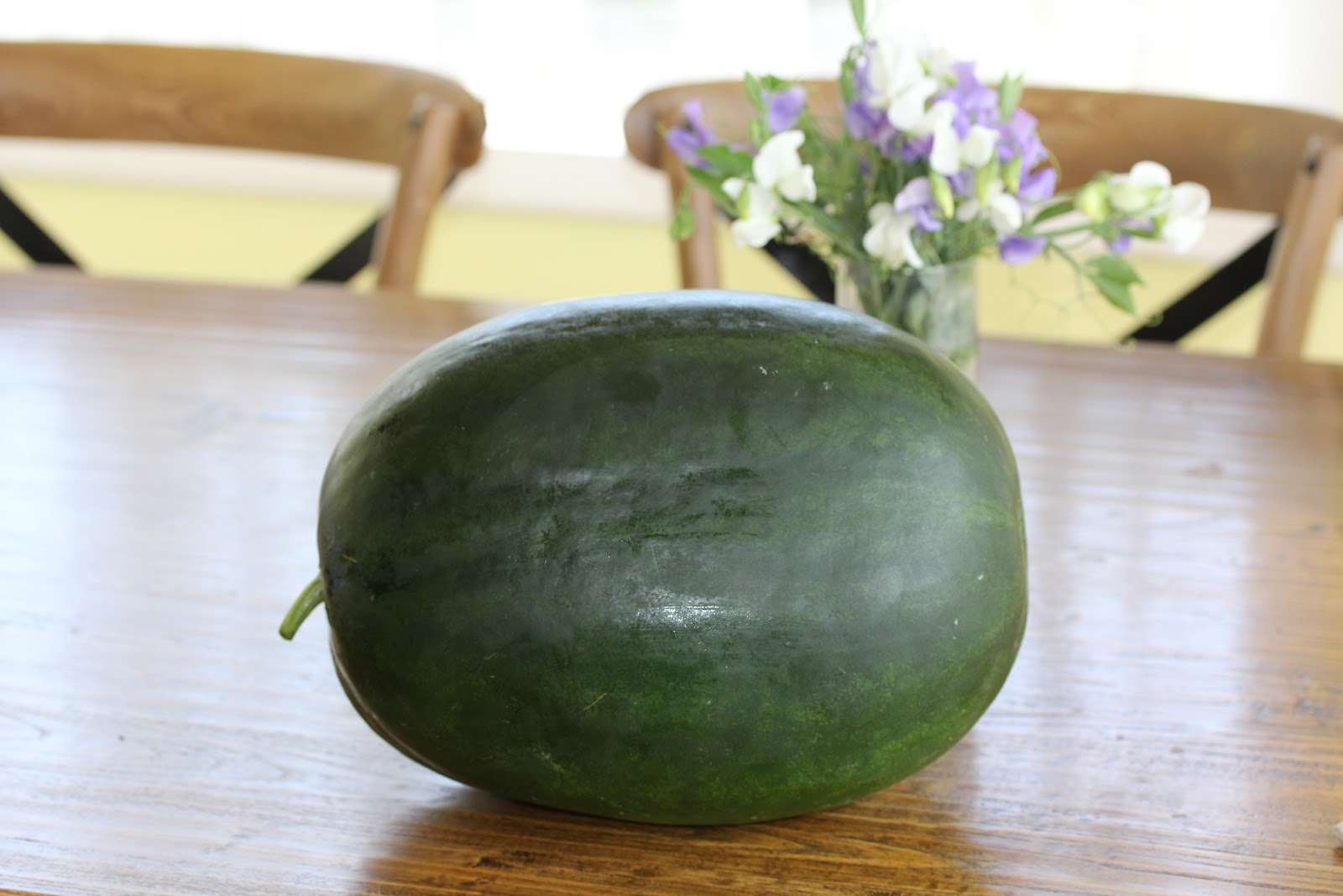 How to grow watermelon in Siberia in a greenhouse 64