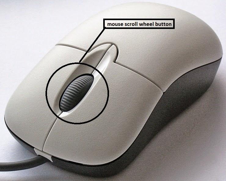 mouse scroll wheel