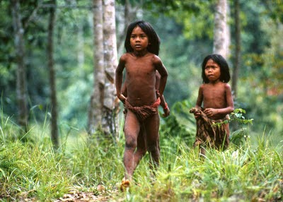 gambar suku kubu