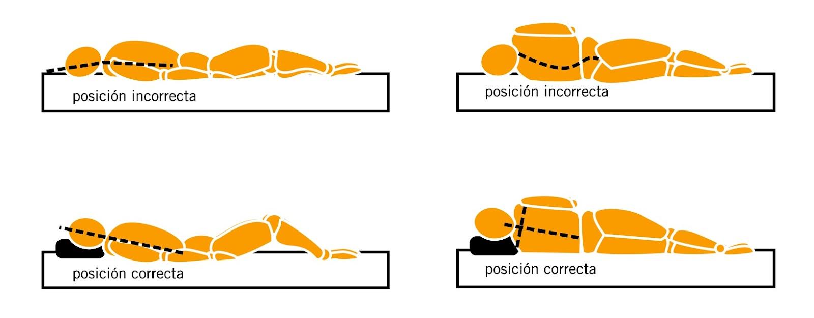Cuidando Nuestro Cuerpo...: ¿Cómo influye una almohada en ...