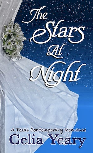 THE STARS AT NIGHT