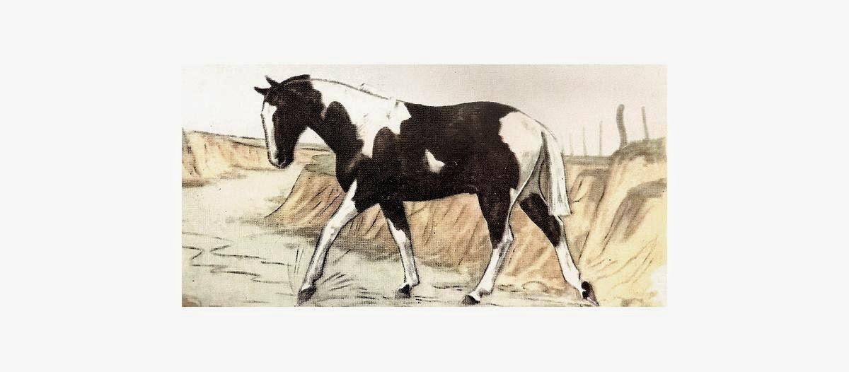 caballo pelaje tobiano