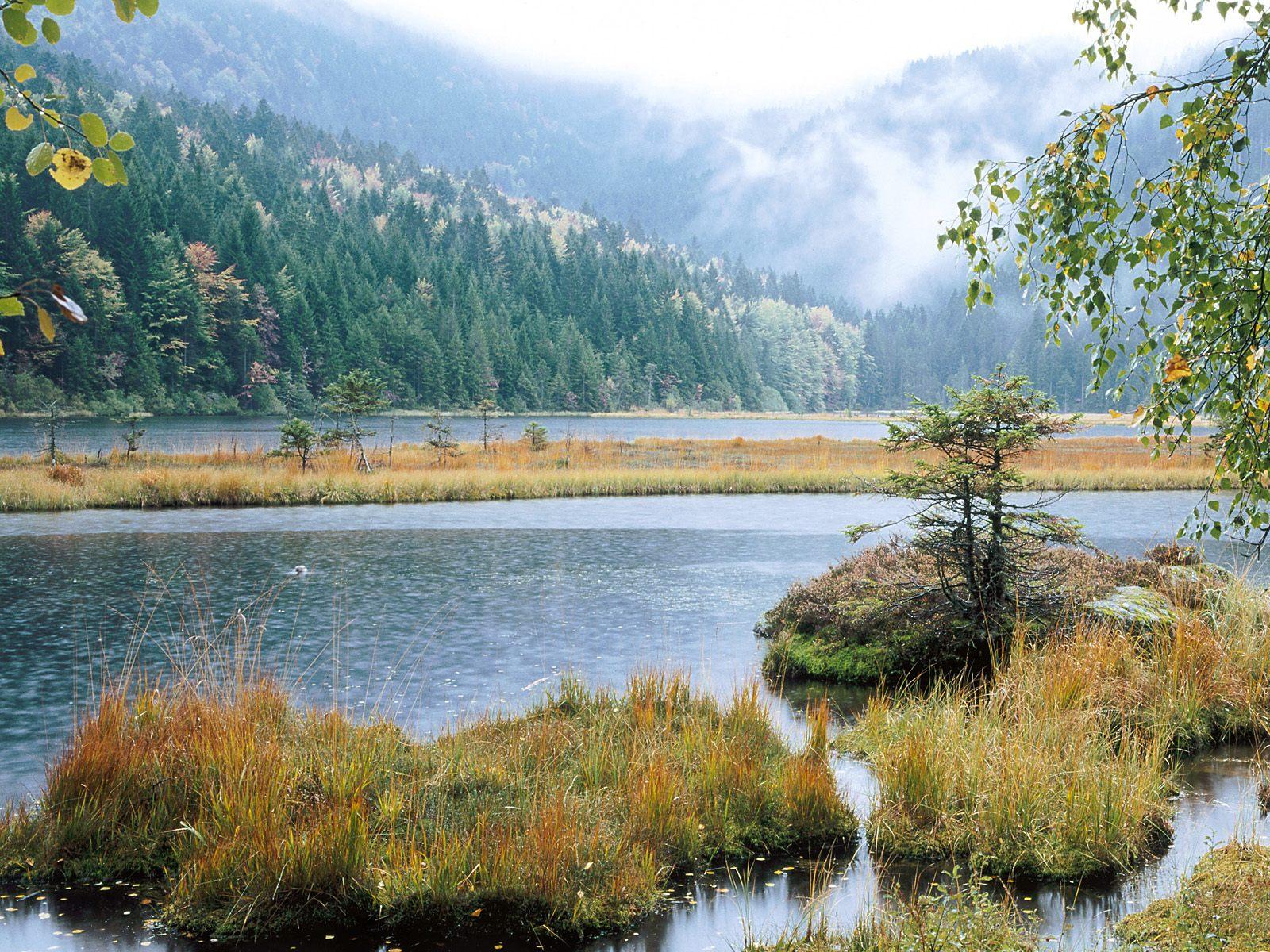 http://3.bp.blogspot.com/-vSwJwp7bGAo/ThFybV2wpvI/AAAAAAAABwk/c1oKp1NBUhI/s1600/Small+Arber+Lake%252C+Bavarian+Forest%252C+Germany.jpg