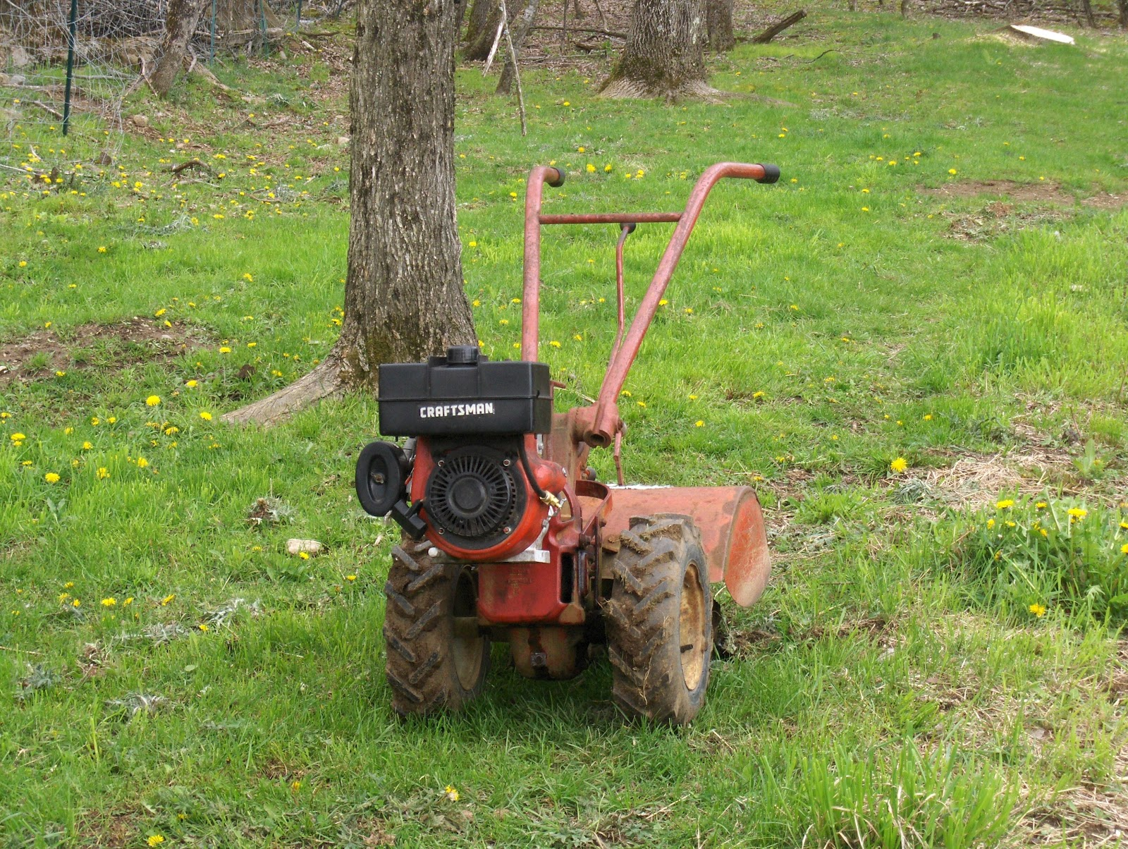 Sustainability thought and deed flogging a dead troy bilt horse the womerlippis ancient troy bilt horse tiller sciox Image collections
