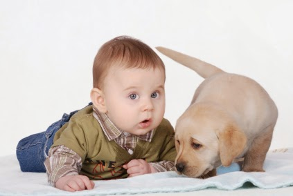 cachorros fofos e seus donos