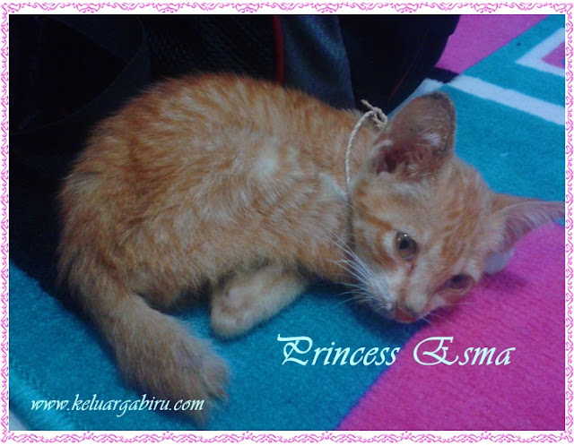 Princess Esma