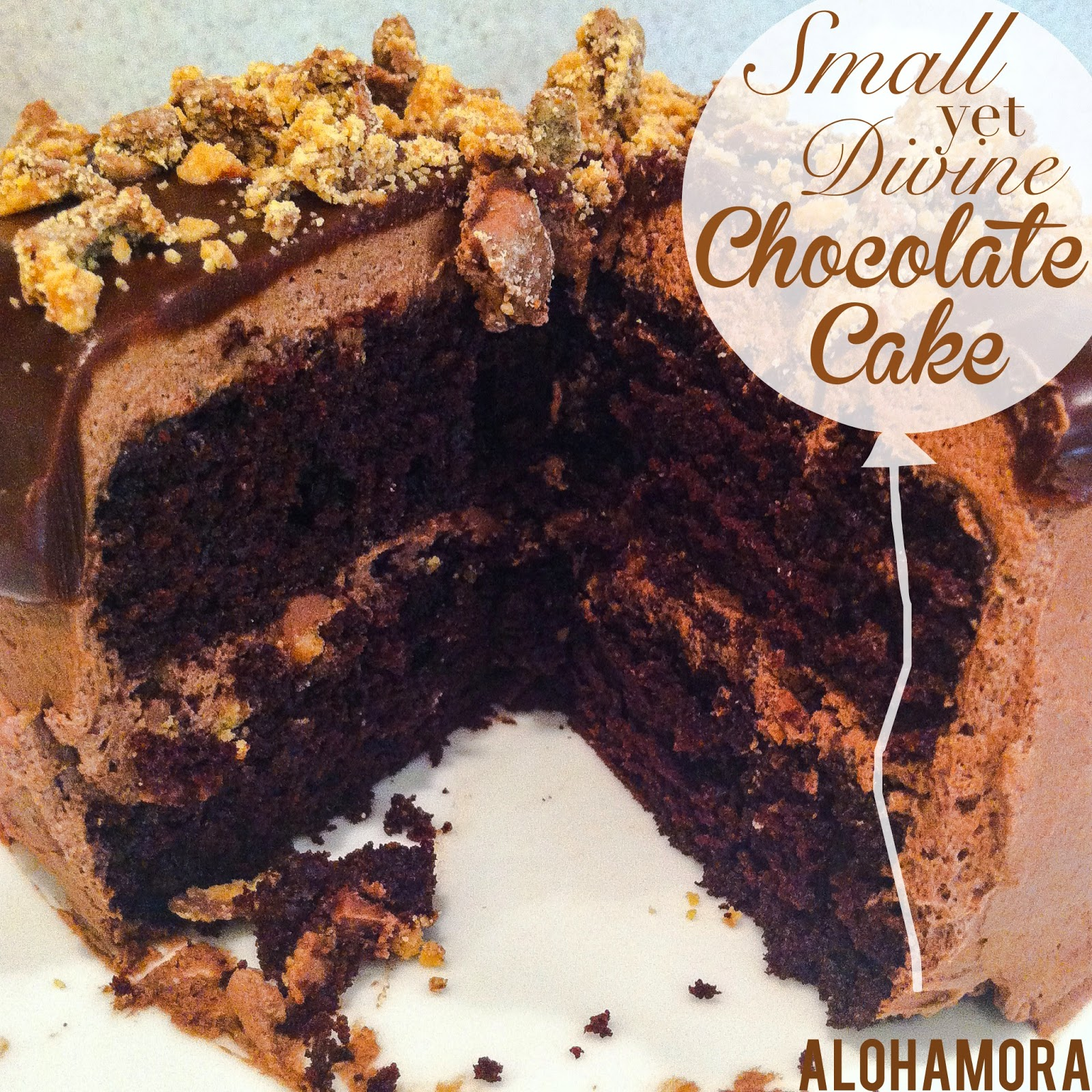 Small in size, but large in chocolate flavor goodness. This Chocolate Cake with a light Chocolate Whipped Cream Frosting Topped with a Chocolate Peanut Butter Ganache is pretty much amazing.  The small size is perfect for a small family. Alohamora Open a Book http://alohamoraopenabook.blogspot.com/