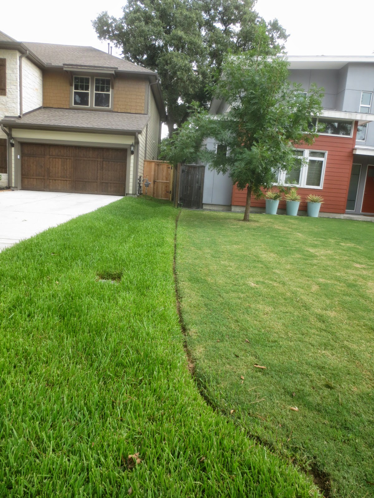 Landscaping With Bermuda Grass : Tropical texana preventing yard wars boundary ideas when