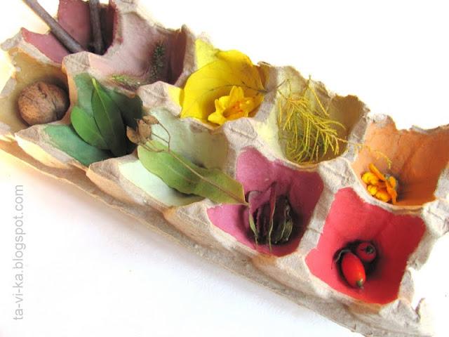 сортер для изучения цветов