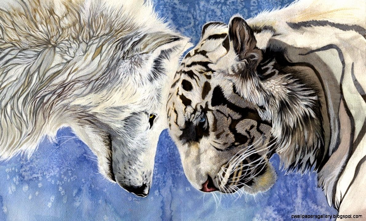 Abstract Art Black And White Wolf  Wallpapers Gallery