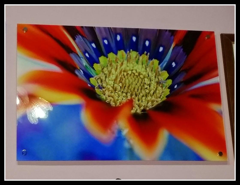 stampa su plexiglass realizzata da graphic shot