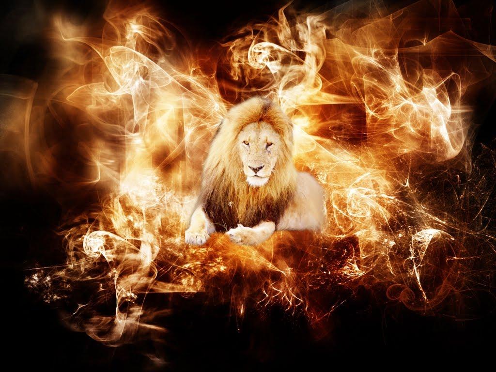 http://3.bp.blogspot.com/-vU24zAylbQY/TjKHZ_LL3TI/AAAAAAAADug/lfNrAX0ejvQ/s1600/Fire-Lion-wallpaper.jpg