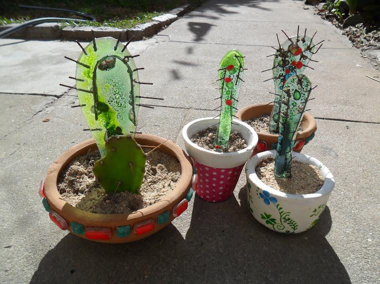 cactus .