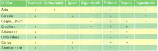 Principalele fitochimicale din vegetale