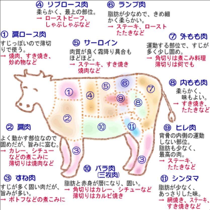 teres major beef diagram | Diarra