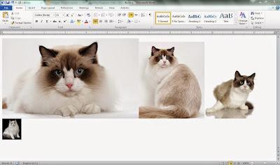 Tutorial Ambil Gambar dari MS Word