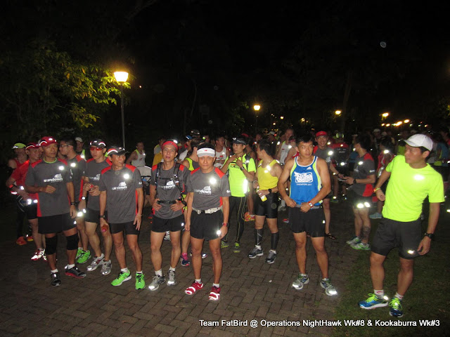 Weekend Training: NightHawks & Kookaburras @ MacRitchie Reservoir