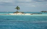 Palm Tree Island (img )
