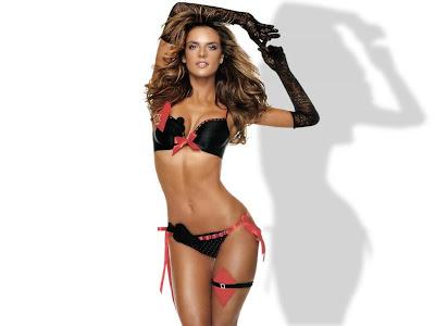 Alessandra Ambrosio Hot HD Wallpaper