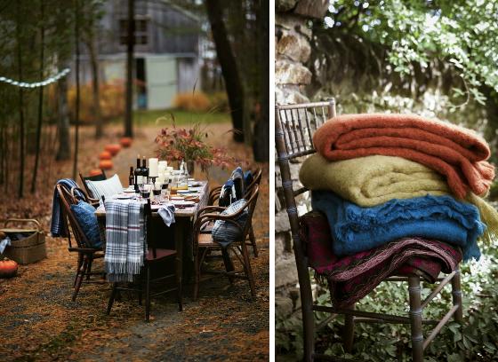 ideas_fiestas_amigos_jardin_flores_cena_luces_mantas