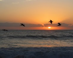 Sunrise on the Fly