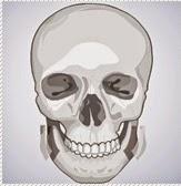 reseksi kortikal untuk koreksi tulang wajah di bedah plastik wonjin