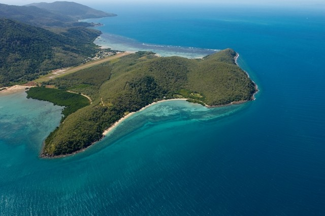 Download this Palm Island Was Named For The Cabbage Tree Palms Growing There picture