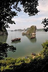 Recull fotogràfic Vietnam