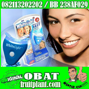 WHITELIGHT TEETH WHITENING 082113202202 Alat Pemutih