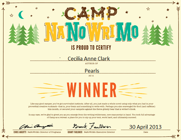 camp nano winner