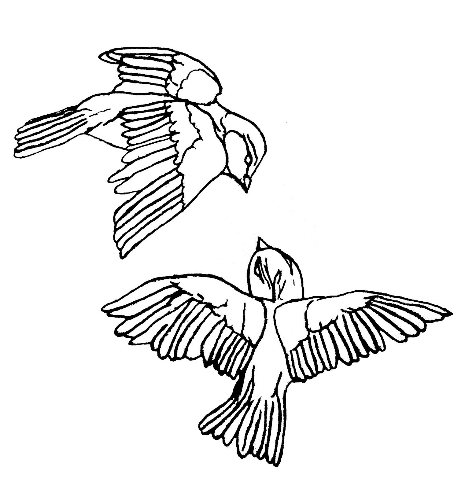 Bird Line Drawing Tattoo : Malinda prud homme a mixed media artist s quot love