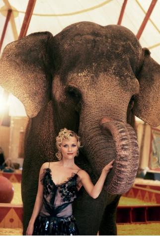 Le Amiche Della Sposa Come Lacqua Per Gli Elefanti