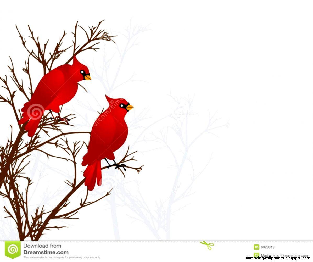 Winter Cardinal Clipart   Clipart Kid