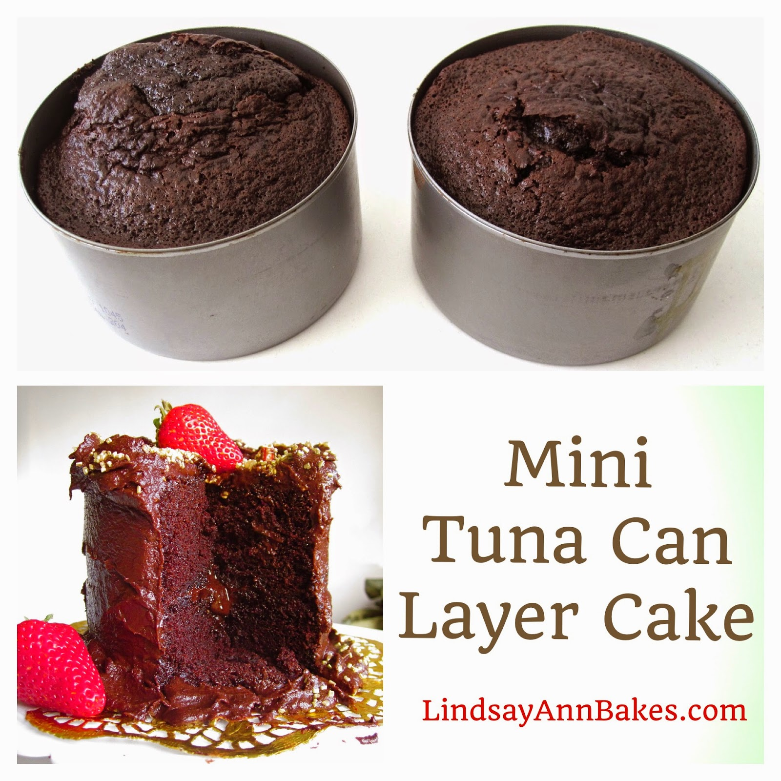 Mini 4Inch Double Chocolate Layer Cake For Two Lindsay Ann Bakes