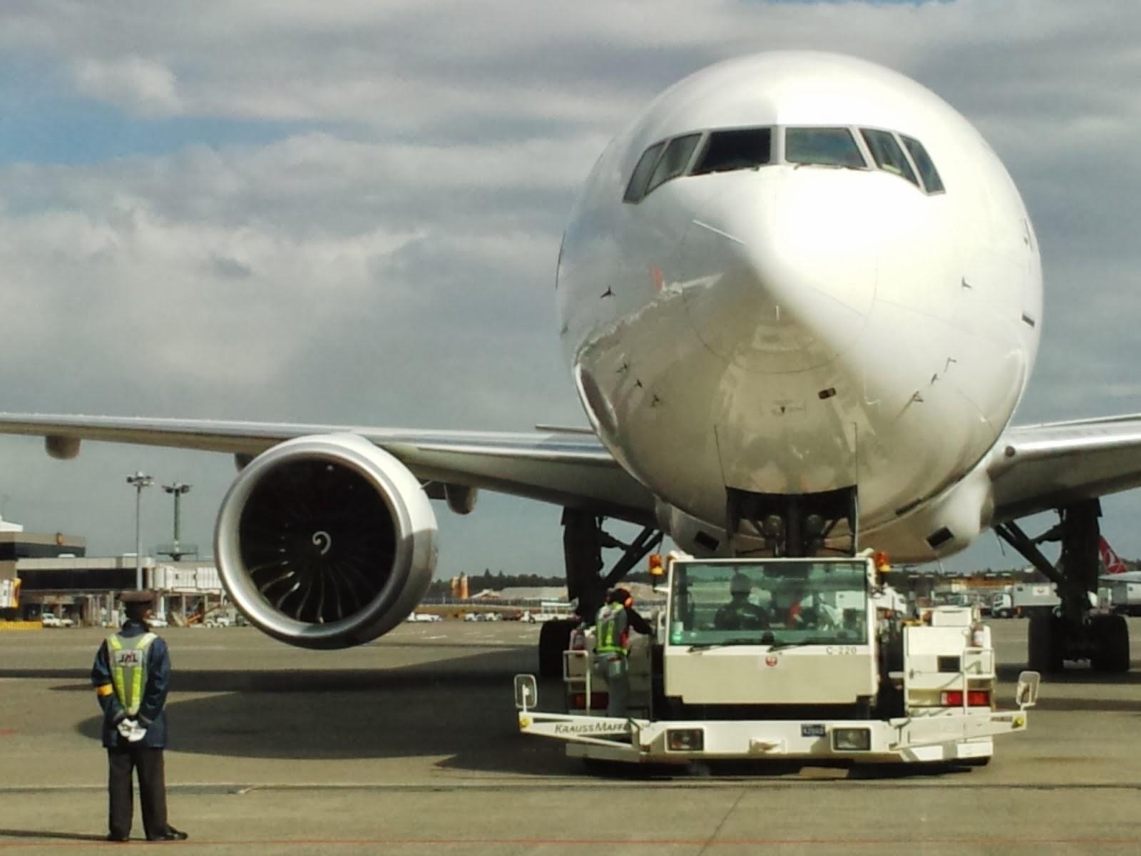 japan airlines(web.reservation)