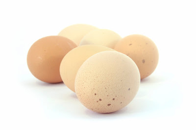 Manfaat Telur Bagi Kesehatan