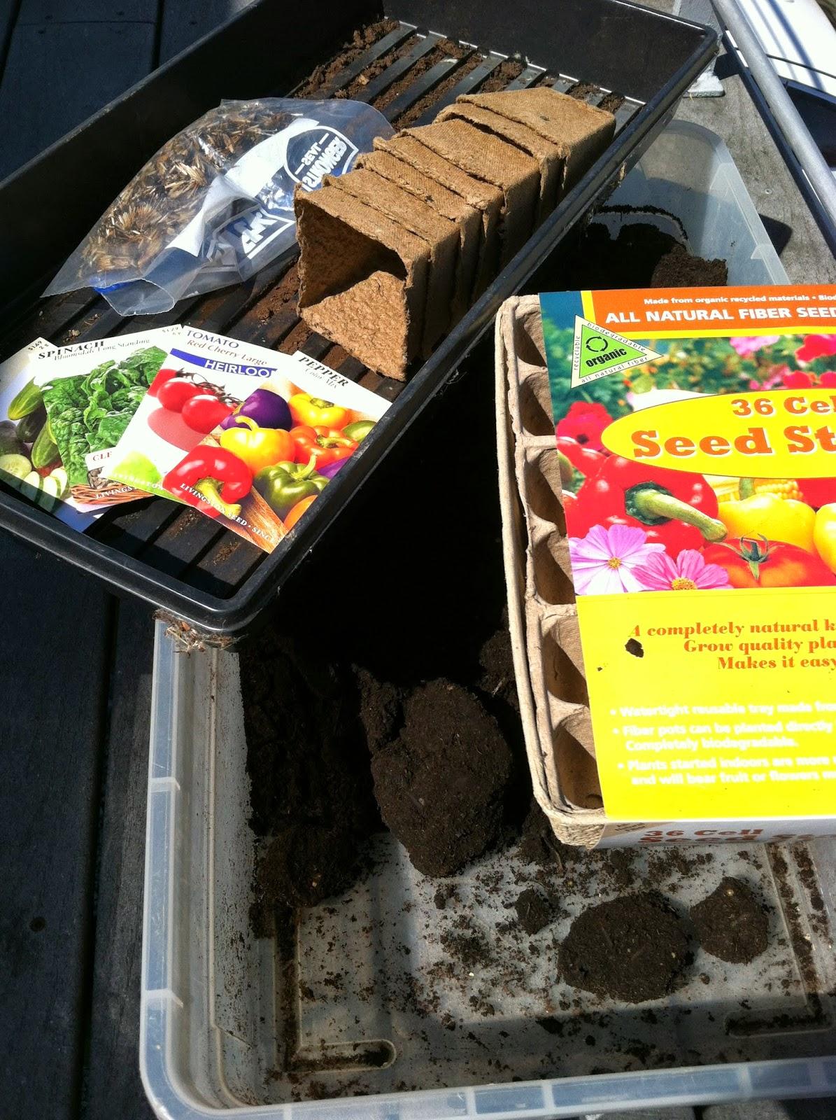 organic garden seed starting
