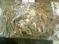 obat herbal daun zaitun