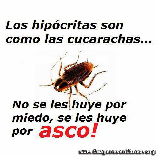Los hipócritas son como las cucarachas, no se les huye por miedo, se les huye por asco!, imagenes para Facebook.