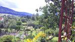 Góry Sowie, a  w dolinie Głuszyca. Najpiękniej chyba wiosną?