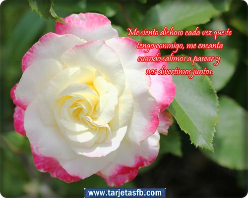 Frases Cristianas para un Feliz Día de la Madre, bella