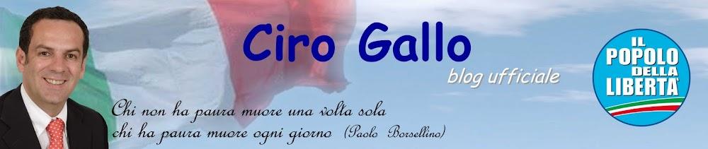 Ciro Gallo - blog ufficiale - Acquedolci